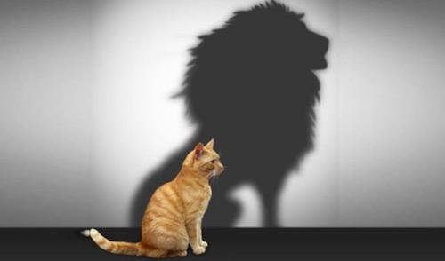 3 brza koraka do samopouzdanja: šta vam stoji na putu do samouverenosti?