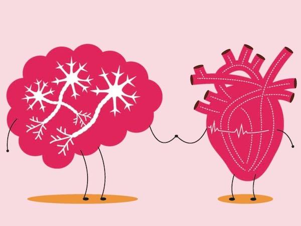 pratite svoje srce ne mozak